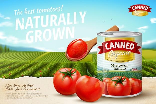 Annunci di pomodoro in scatola con verdure fresche su campo verde in illustrazione 3d