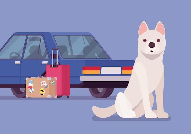 Viaggio in auto, viaggio su strada con cane da compagnia