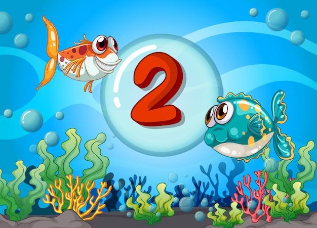 Scheda numero due con 2 pesci sott'acqua Vettore Premium