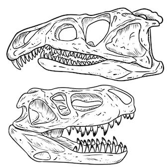 Insieme di schizzo disegnato a mano di linea di teschi di dinosars carnivoro