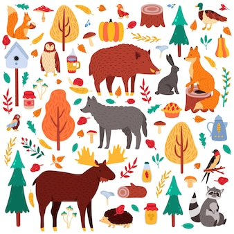 Animali autunnali dei cartoni animati. simpatici uccelli e animali del bosco, lupo di anatra alce e scoiattolo, set di icone di illustrazione di fauna di boschi selvatici. procione e maiale, coniglio, bosco di alberi, uccelli e orsi