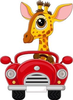 Giraffa cartone animato alla guida di un'auto rossa