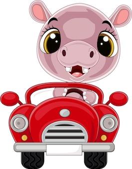 Ippopotamo cartone animato alla guida di un'auto rossa