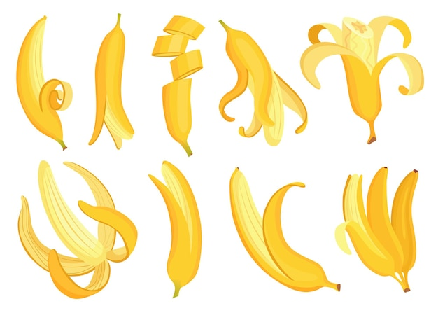 Banane del fumetto. frutti tropicali, snack alla banana o alimentazione vegetariana. frutta e cibo dolce maturo. insieme di vettore della frutta della banana in vari lati. singolo cartone animato giallo sbucciato e mazzo di banane.