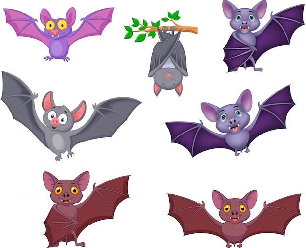 Collezione di pipistrelli dei cartoni animati