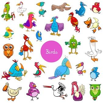 Grande collezione di cartoni animati uccelli animali personaggi