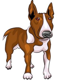 Cartone animato bull terrier cane di razza