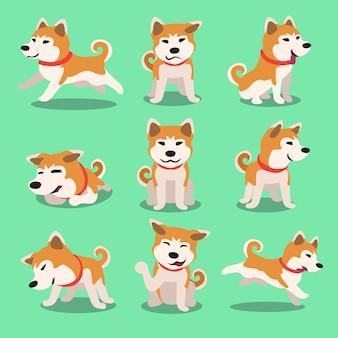 Pose del cane di akita inu del personaggio dei cartoni animati