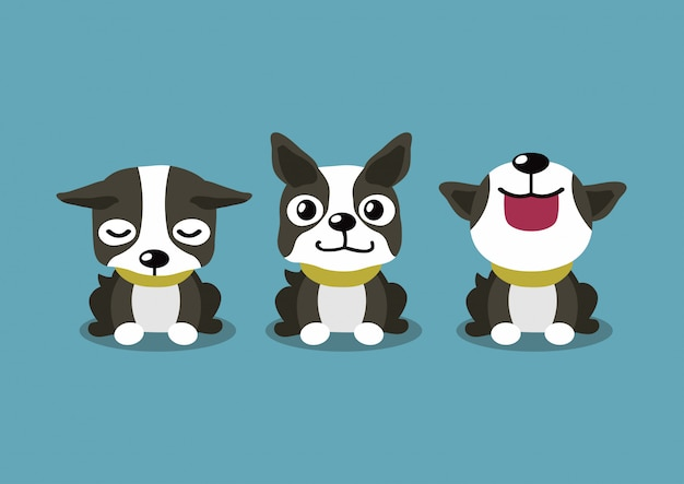 Pose del cane di boston terrier del personaggio dei cartoni animati