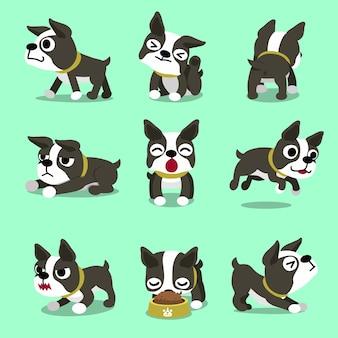 Pose del cane del boston terrier del personaggio dei cartoni animati