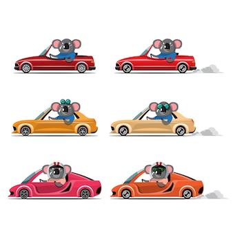 Cartoon carino animale guida auto sulla strada