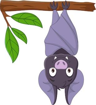 Pipistrello sveglio del fumetto che appende sul ramo