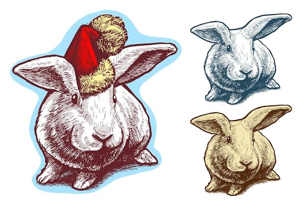 Simpatico coniglio divertente cartone animato con cappello di babbo natale