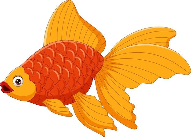Pesce rosso sveglio del fumetto su un bianco