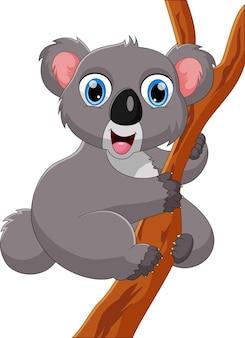 Cartone animato carino koala su un albero