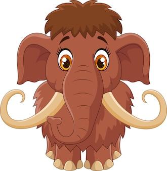 Mammut carino cartone animato isolato su sfondo bianco