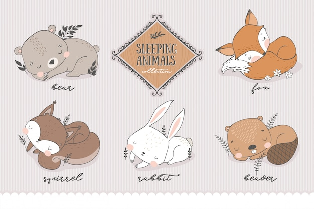 Collezione di personaggi della foresta dei cartoni animati. animale addormentato