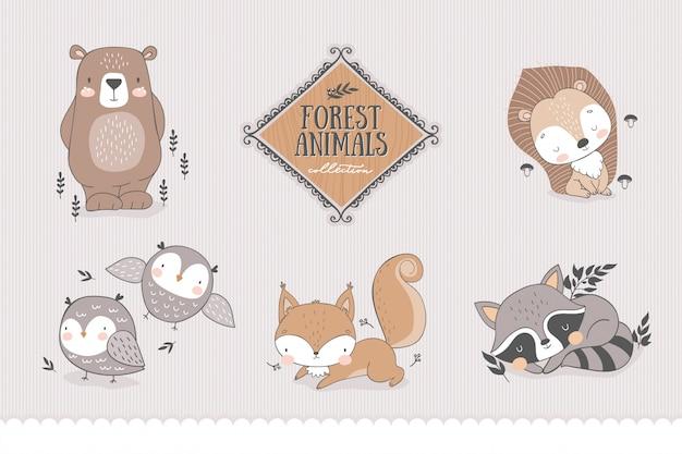 Collezione di personaggi della foresta dei cartoni animati.