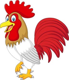 Gallo di pollo divertente del fumetto isolato su priorità bassa bianca