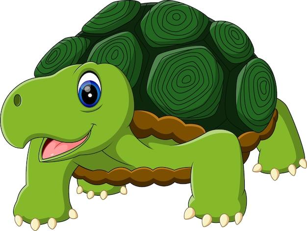 Tartaruga divertente del fumetto isolata su fondo bianco