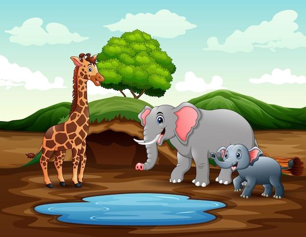 Cartone animato una giraffa e degli elefanti che si godono la natura vicino allo stagno