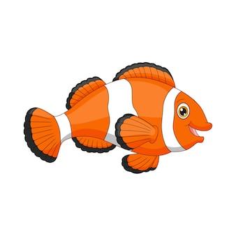 Pesce pagliaccio felice del fumetto isolato su bianco