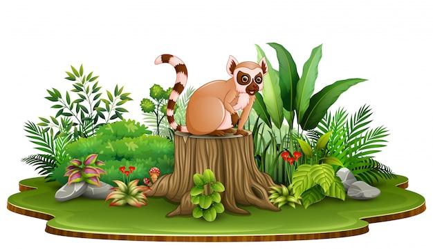 Lemure felici del fumetto che si siedono sul ceppo di albero con le piante verdi