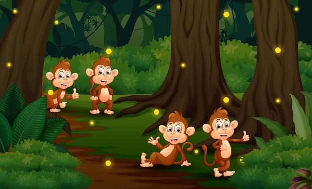 Cartoon illustrazione di quattro scimmie che giocano nella foresta oscura