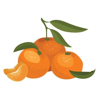Illustrazione del fumetto di un mandarino. illustrazione di arance su uno sfondo bianco. illustrazione per bambini.