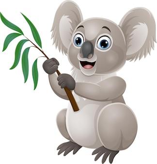 Koala del fumetto che tiene un ramo di albero di eucalipto