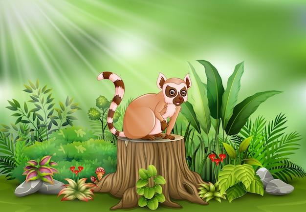 Fumetto delle lemure che si siedono sul ceppo di albero con le piante verdi