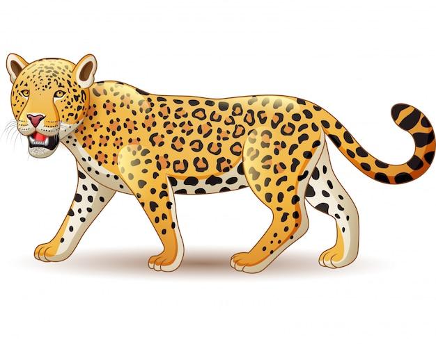 Leopardo del fumetto isolato su fondo bianco