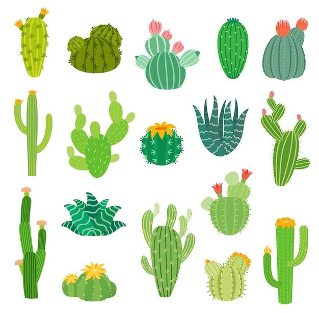 Cartoon messicano o peruviano deserto cactus succulente con fiori, icone isolate di vettore. cactus estivi di aloe vera, agave e opuntia con fiori in fiore, piante spinose del messico e del perù