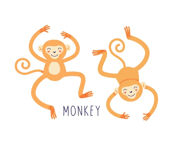 Illustrazione della scimmia del fumetto