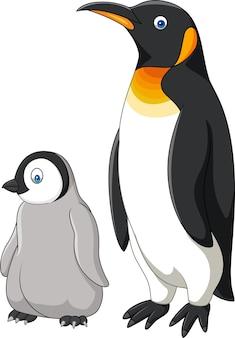 Pinguino della madre e del bambino del fumetto isolato su fondo bianco