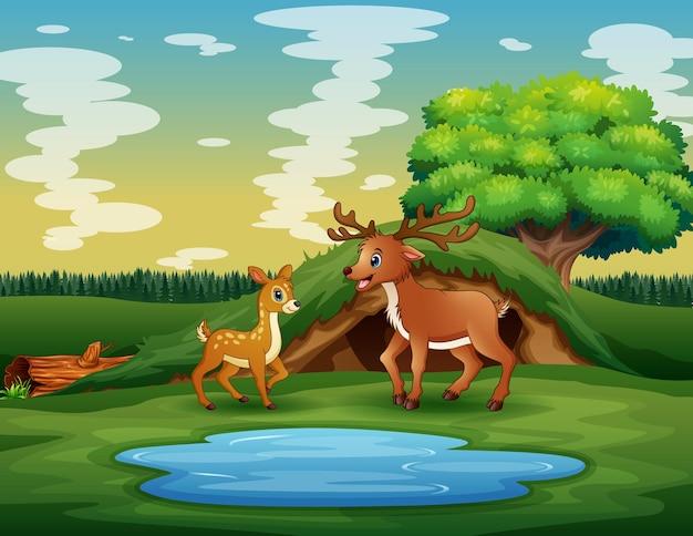 Cartone animato una madre cervo con il suo cucciolo che gioca vicino allo stagno