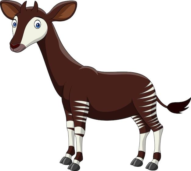 Okapi del fumetto isolati su fondo bianco