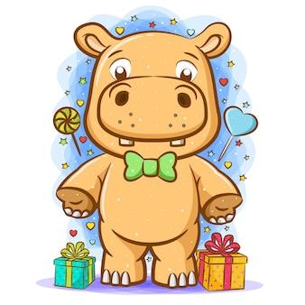Il cartone animato dell'ippopotamo arancione intorno al regalo per la festa di compleanno