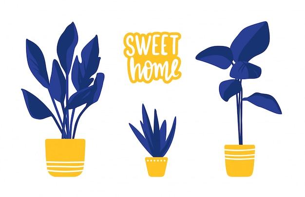 Insieme del fumetto con le piante domestiche isolate su bianco