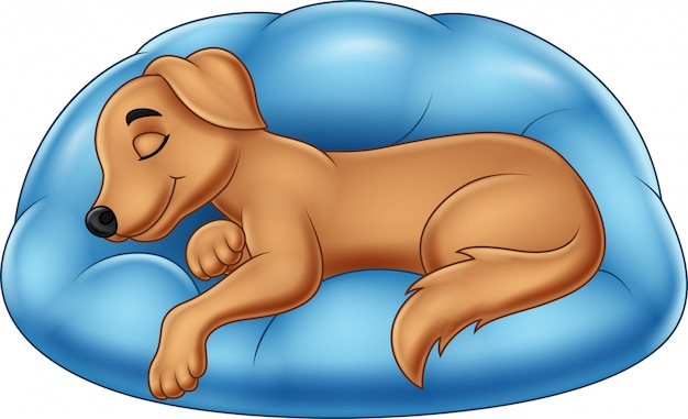 Cartoon sleep dog