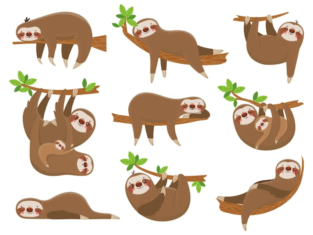 Famiglia di bradipi di cartone animato