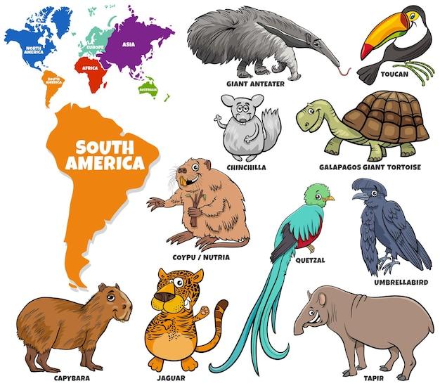 Set di personaggi animali sudamericani dei cartoni animati e forme di continenti