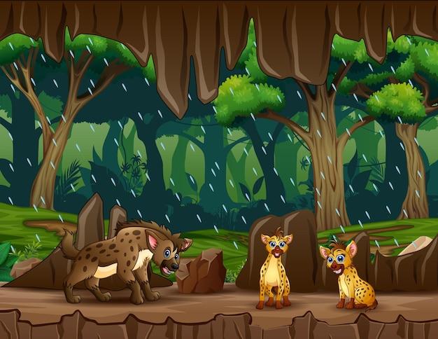 Cartone animato tre di iene nell'illustrazione dell'ingresso della grotta