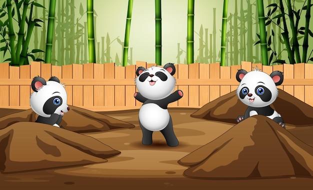 Cartone animato di tre panda che giocano nella gabbia aperta