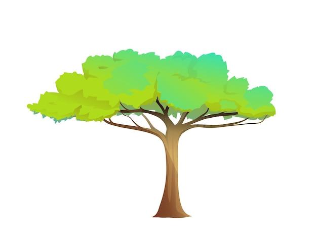 Albero di cartone animato da solo con un'ampia corona verde isolata su bianco clipart di natura per bambini
