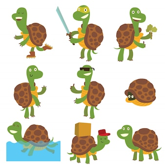 Set di tartarughe di cartone animato.