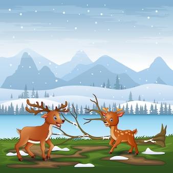 Cartoon due cervi che giocano nel paesaggio invernale