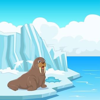 Tricheco del fumetto che galleggia sul ghiaccio
