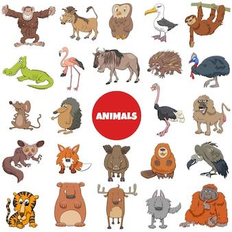 Grande set di personaggi di animali selvatici dei cartoni animati