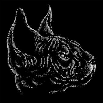 Illustrazione della testa del gatto